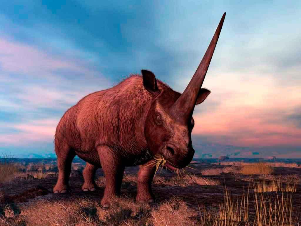 Elasmotherium!  Jurrassic Pack Builder  YouTube